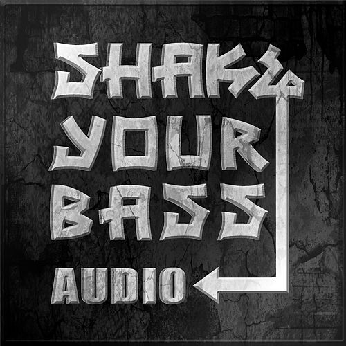 Shake Your Bass Vol. 1 by Various Artists