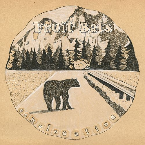 Echolocation von Fruit Bats