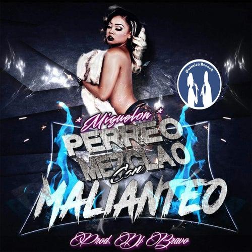 Perreo Mezclao Con Malianteo by Miguelon