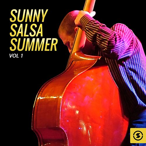 Sunny Salsa Summer, Vol. 1 de Various Artists