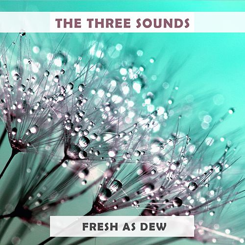 Fresh As Dew by The Three Sounds