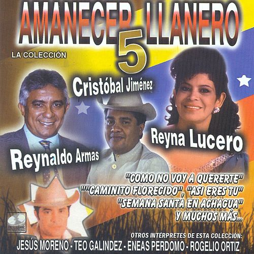 Amanecer Llanero, Vol. 5 de Various Artists