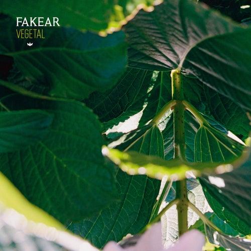 Vegetal: Offshoots EP de Fakear