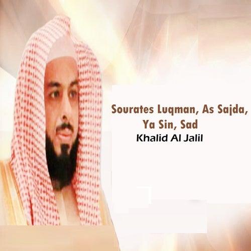 Sourates Luqman, As Sajda, Ya Sin, Sad (Quran) by Khalid Al Jalil