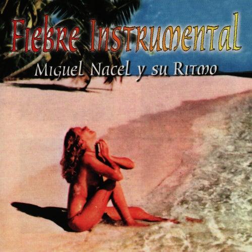 Fibre Instrumental de Miguel Nacel