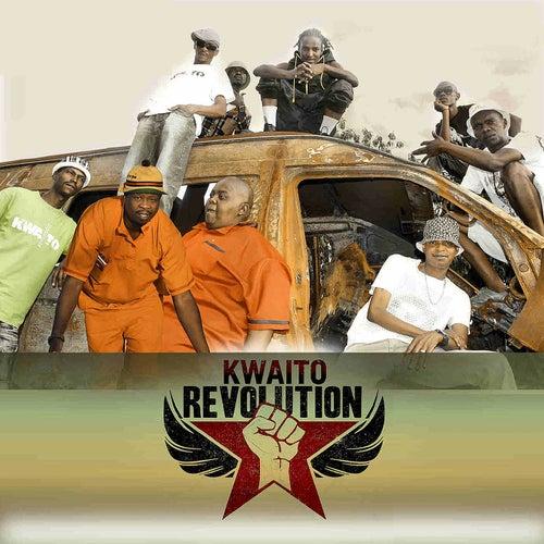 Kwaito Revolution von Various Artists
