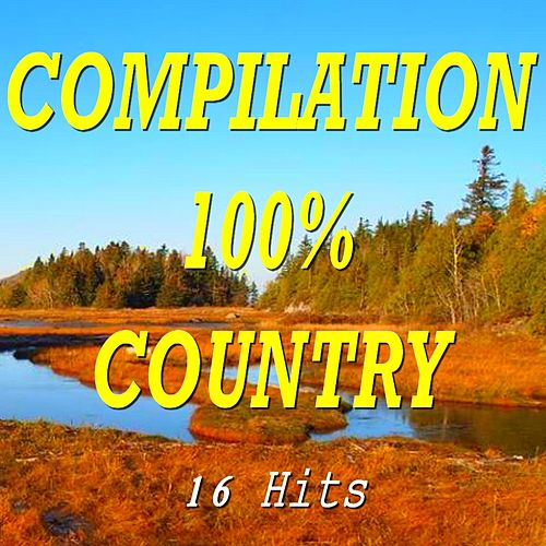 Compilation 100% Country (16 Hits) by Various Artists