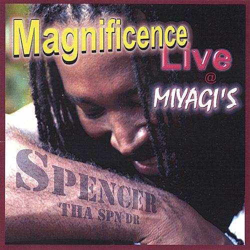 Magnificence Live @ Miyagi's de Spencer