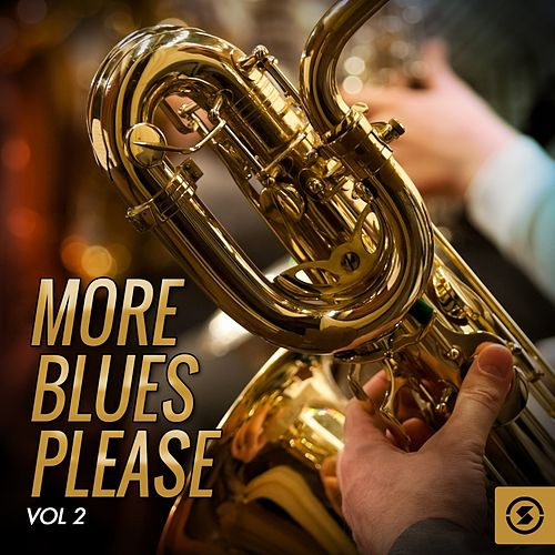 More Blues Please, Vol. 2 de Various Artists