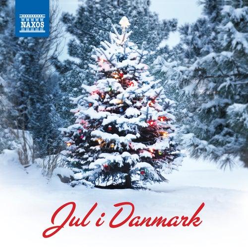 Jul i Danmark von Various Artists