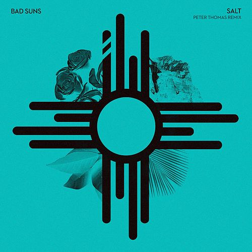 Salt (Peter Thomas Remix) von Bad Suns