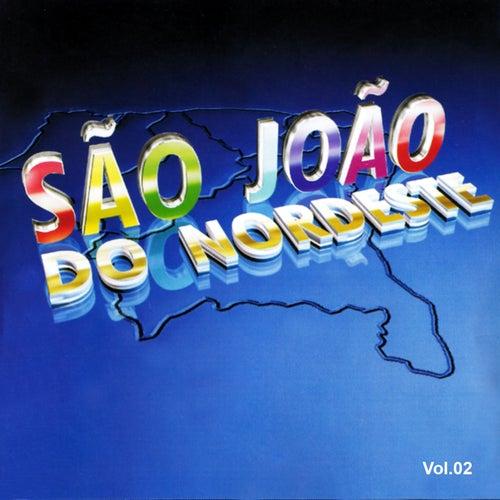 São João do Nordeste, Vol. 2 by Various Artists