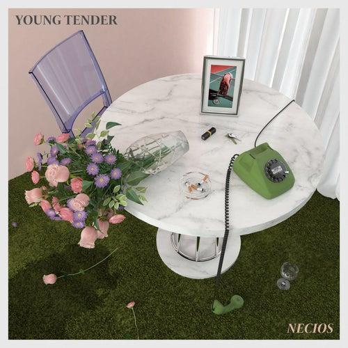 Necios de Young Tender