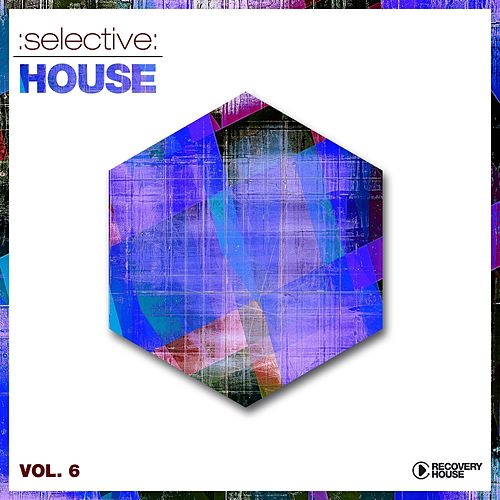 Selective: House, Vol. 6 de Various Artists