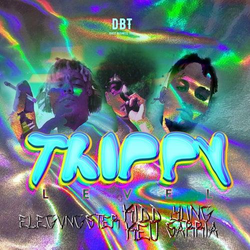 Trippy Level (feat. Yung Sarria & Elegvngster) von Kidd Keo
