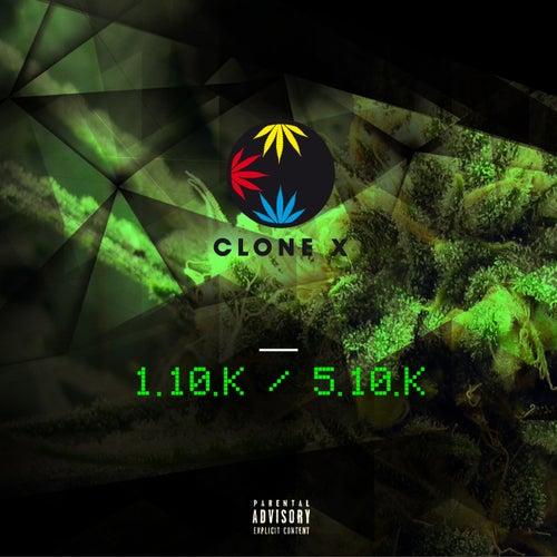 1.10.K / 5.10.K (Indica syndicat) de Clone X