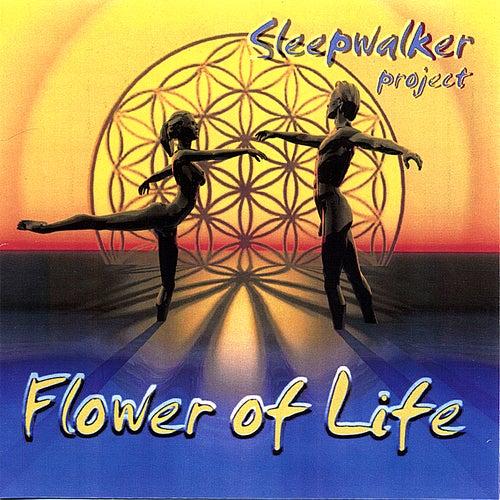 Flower of Life by Sleepwalker