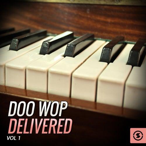 Doo Wop Delivered, Vol. 1 de Various Artists