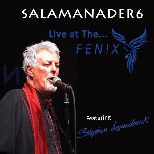 Live at the Fenix von Salamander6