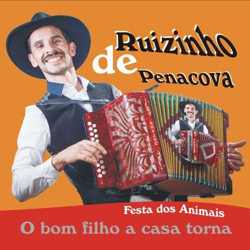 Festa Dos Animais - O Bom Filho a Casa Torna de Ruizinho De Penacova