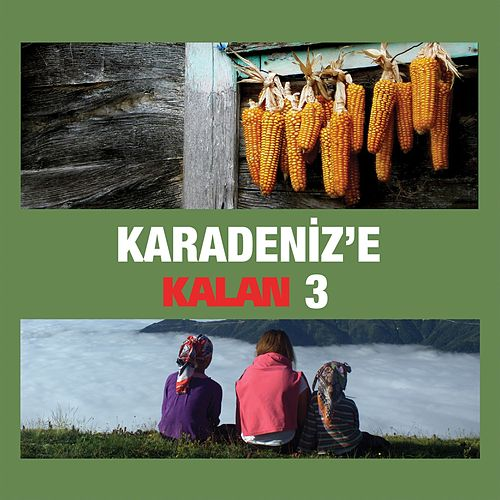 Karadeniz'e Kalan, Vol. 3 by Various Artists