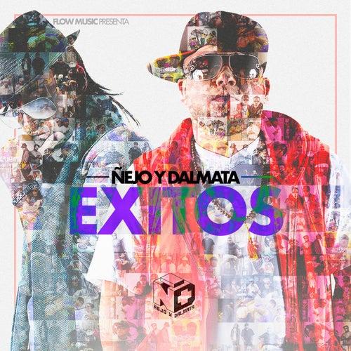 Exitos de Ñejo & Dalmata