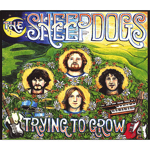 Trying to Grow de The Sheepdogs