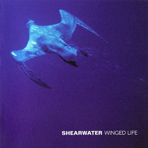 Winged Life by Shearwater