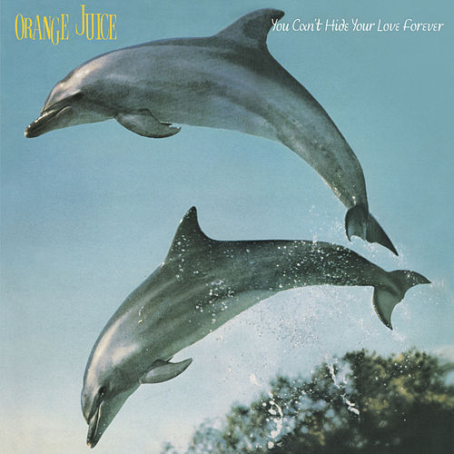 You Can't Hide Your Love Forever by Orange Juice