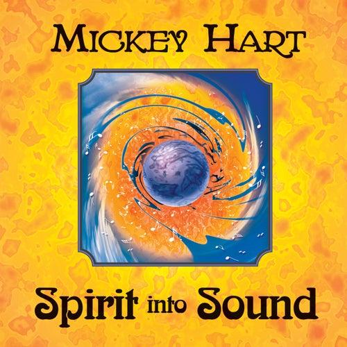 Spirit Into Sound by Mickey Hart