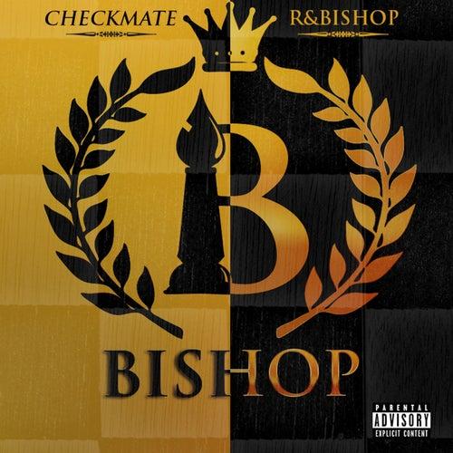 Checkmate / R&Bishop de Bishop