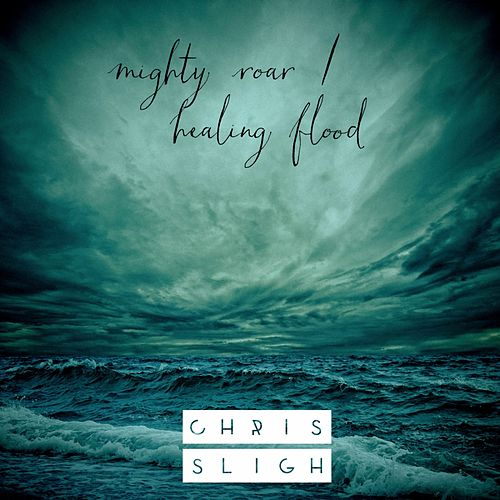Mighty Roar / Healing Flood de Chris Sligh