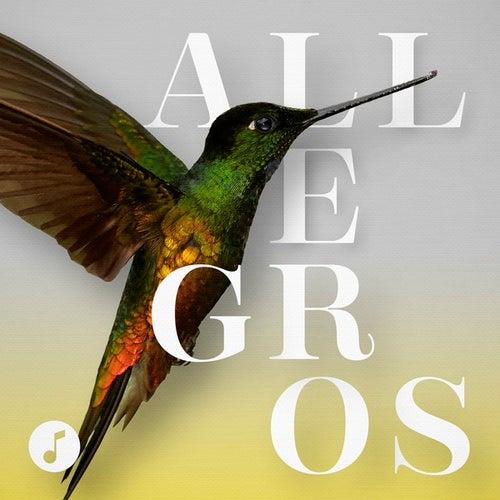 Allegros von Various Artists