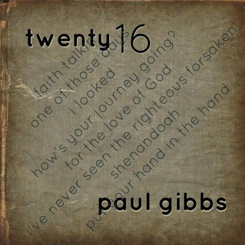Twenty 16 by Paul Gibbs