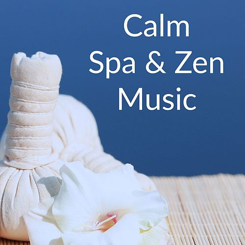 Calm Spa & Zen Music de Zen Meditate