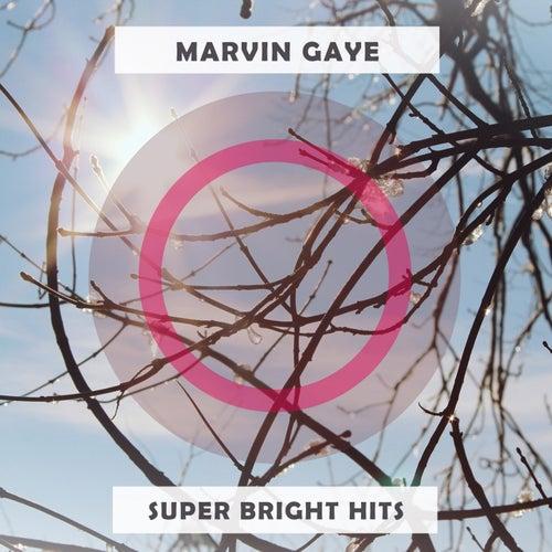 Super Bright Hits de Marvin Gaye