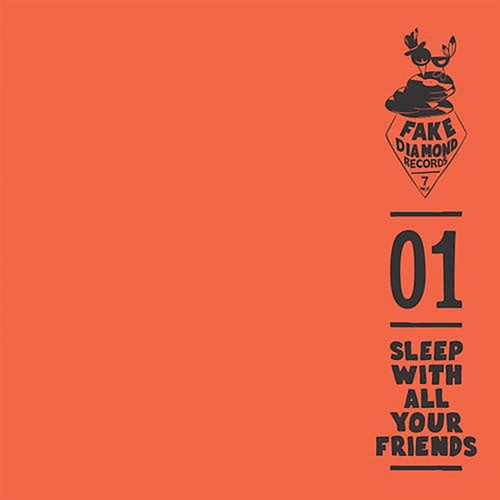 Fake Diamond 7 Inch, Vol. 1 von Sleep With All Your Friends