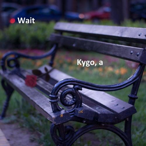 Wait von Kygo