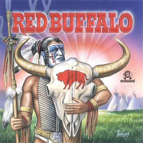 Red Buffalo (Ecosound musica indiana andina) de Ecosound
