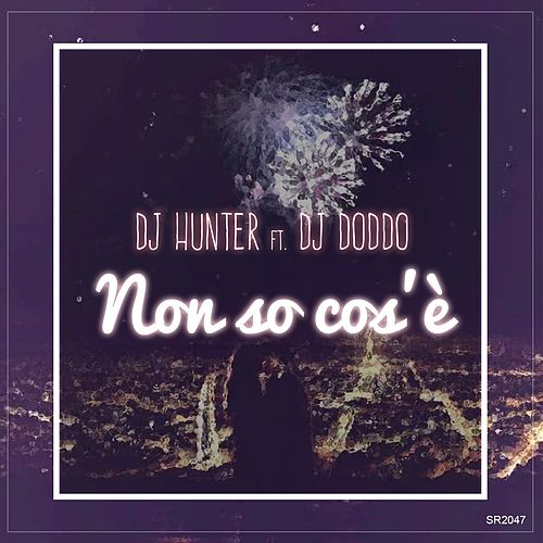 Non so cos'è de DJ Hunter