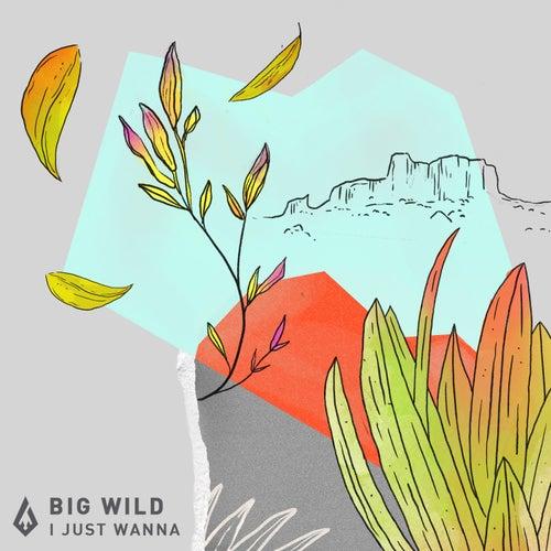 I Just Wanna by Big Wild