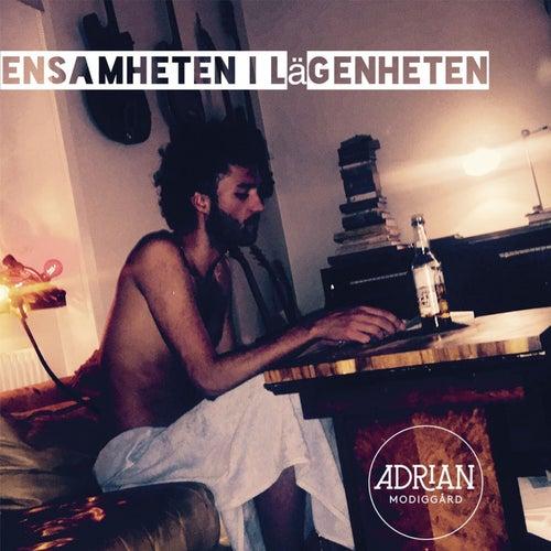 Ensamheten i lägenheten by Adrian Modiggård