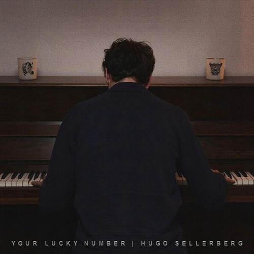 Your Lucky Number de Hugo Sellerberg