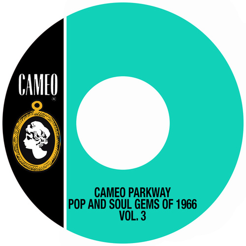 Cameo Parkway Pop And Soul Gems Of 1966 Vol. 3 by Various Artists