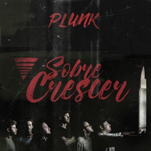 Sobre Crescer (Ao Vivo) by Plunk