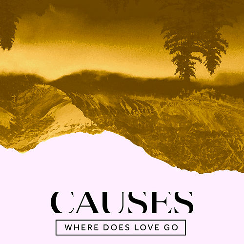 Where Does Love Go von Causes