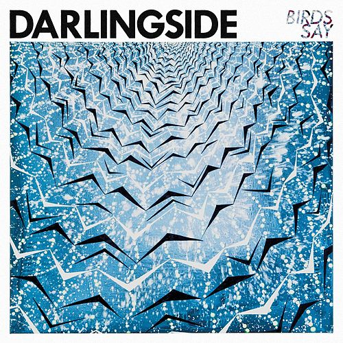 Birds Say (Deluxe) von Darlingside