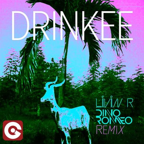 Drinkee (Livin R & Dino Romeo Remix) di Sofi Tukker