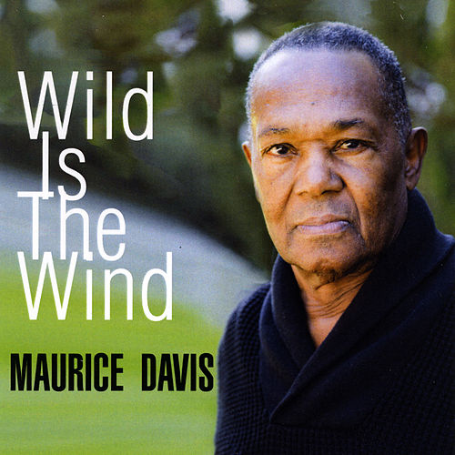 Wild Is the Wind von Various Artists