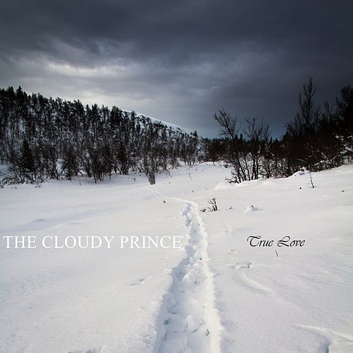 True Love by The Cloudy Prince